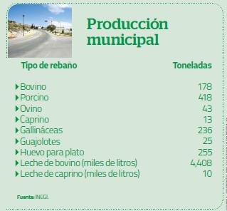 Producción Municipal