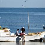 """""""Malas mareas"""" para la pesca regional."""