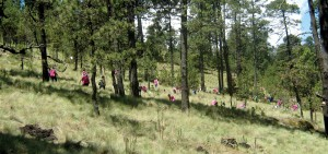 Sierra de Gadalupe Noviembre 2013
