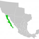 Bajacalifornianos al Grito de Independencia