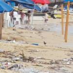 Ayuntamientos,primer filtro en protección ambiental.