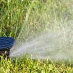 Para áreas verdes: Riego eficiente
