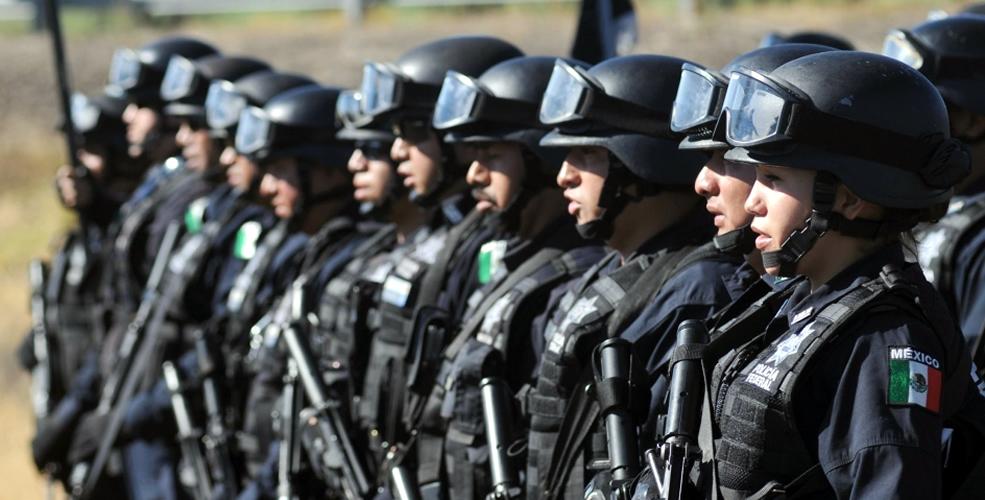 Gendarmería, Nacional, Funciones, México