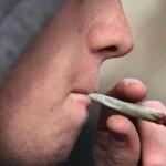 La marihuana avanza en su legalización por el mundo