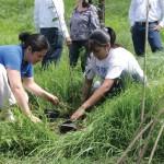 Culiacán inicia campaña de reforestación