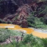 Alcaldes piden reunión con Grupo México por daños a Río Sonora