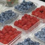 Zamora, Jacona y Los Reyes exportan berries a China y E.U.