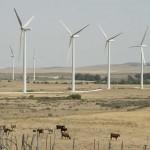 Oaxaca produce el 90% de energía eólica del país