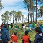 Bosques, una oportunidad para el desarrollo comunitario