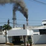 México venderá ingenios azucareros expropiados en 2001