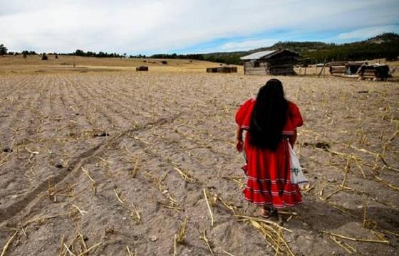 Rescatan_200_Tarahumaras_Alcaldes_de_Mexico