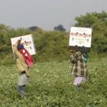 Rescatan a 48 indígenas explotados laboralmente en Colima