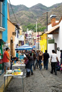 Calle malinalco