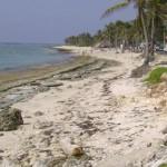 Playas mexicanas en riesgo de desaparecer por complejos turísticos