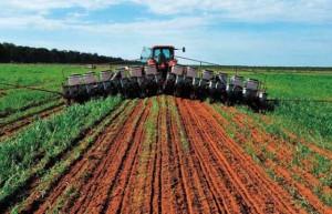 Software_ayudara_productores_agricolas_Alcaldes_de_Mexico