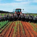 Software identificará riesgo climático y rendimiento de cultivos