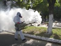 El chikungunya se ha extendido a la mitad del país