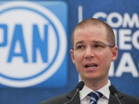 Ricardo Anaya, nuevo dirigente nacional del PAN