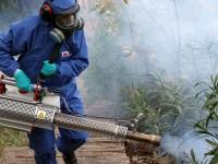 Chikungunya, una epidemia sin fronteras