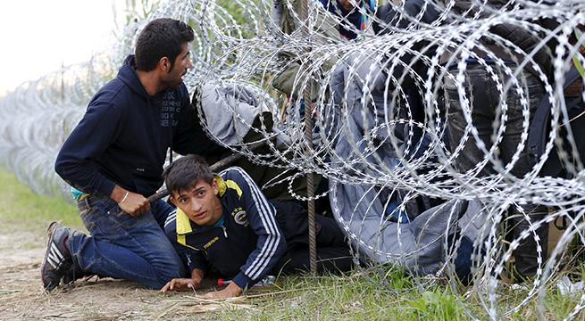 Deshumanizacion_opinion_Alcaldes_de_Mexico_Septiembre_2015