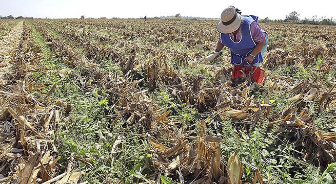 Financiamiento_sector_rural_Alcaldes_de_Mexico_septiembre_2015