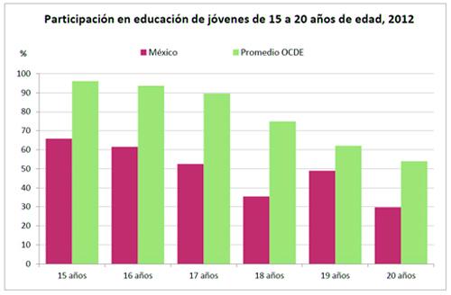 grafica-educacion-15-20-anosb