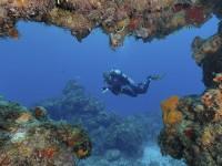 Arrecifes, protección de playas mexicanas: Cinvestav