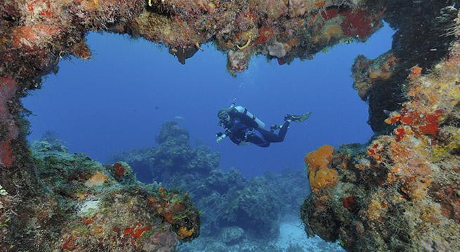 Arrecifes_Proteccion_Playas_Alcaldes_de_Mexico_Octubre_2015