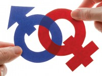 Estados deberán garantizar programas y políticas por la igualdad de género