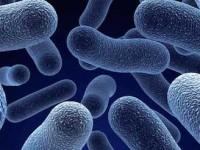 Desarrollan nanotecnología para detectar contaminantes en agua