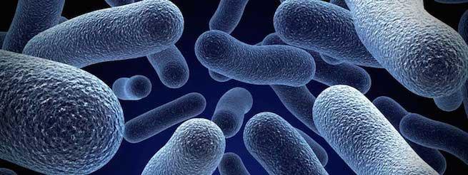 Nanotecnologia_descontaminar_agua_Alcaldes_de_Meixo_Octubre_2015