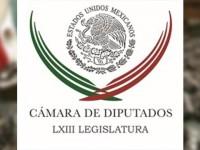 Cámara de Diputados da a conocer nuevo logotipo