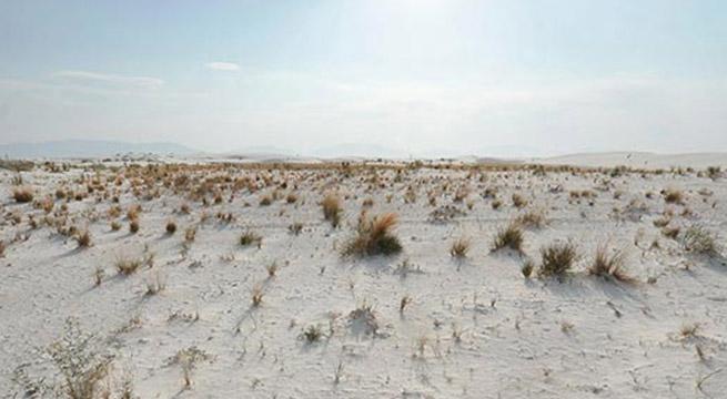 Tecnologías sustentables para zonas áridas en México