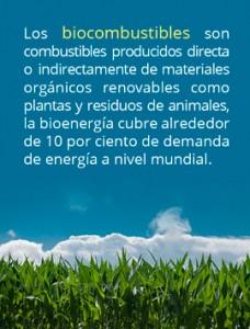 biocombustibles-reportaje-coahuila