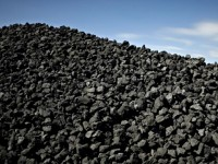Quintana Roo elabora carbón de manera sustentable