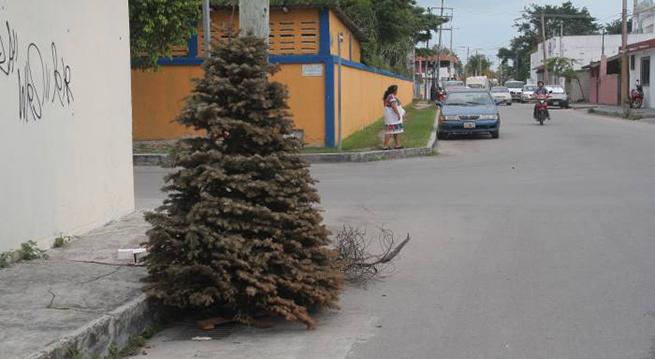Arbol-Navidad-Abandonado