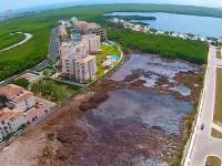 """Profepa no halla """"ecocidio o devastación ambiental"""" en Tajamar"""