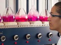 La ciencia en México, retos y oportunidades