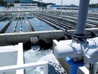 México cuenta con 0.1% de agua dulce a nivel mundial: CESOP