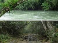Desaparece el río Atoyac que atravesaba ocho municipios de Veracruz (Video)