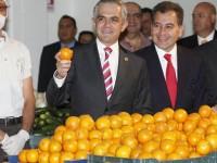 Inician acciones para detener el desperdicio de alimentos en la Ciudad de México
