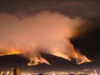 Incendio consume 100 hectáreas de bosque en Uruapan