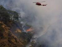 Incendios forestales: los estados más afectados