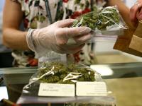 Senado propone otorgar facultades a SSa para importar mariguana medicinal