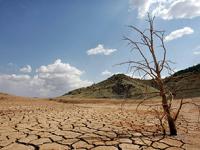 Más de mil municipios mexicanos vulnerables por falta de agua