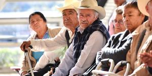 Pensiones_en_peligro_de_extincion_Alcaldes_de_Mexico_Junio_2016