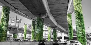 Inauguran_primeros_jardines_verticales_en_CDMX_Alcaldes_de_Mexico_Julio_2016