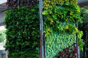 jardines_166_32