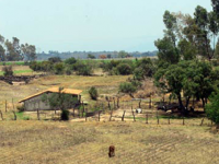 Desertificación: amenaza para las tierras agrícolas