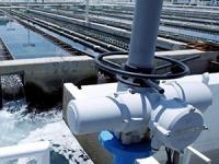 El agua: asunto de buen gobierno